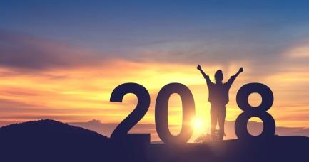 predsevzeti 2018 a